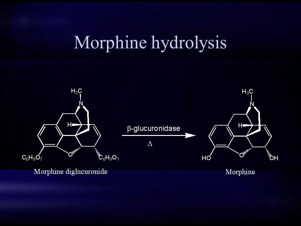 Morphine hydrolysis
