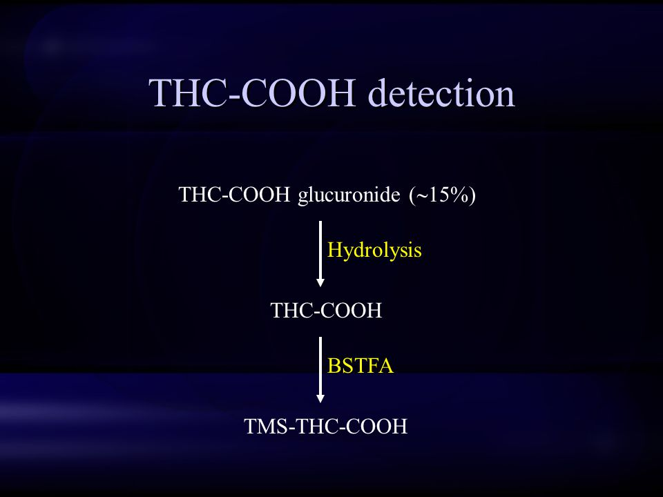 THC-COOH detection THC-COOH glucuronide (  15%) THC-COOH TMS-THC-COOH Hydrolysis BSTFA