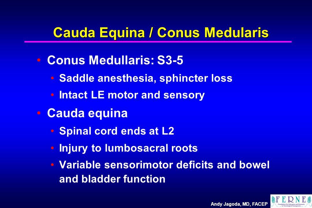 Andy Jagoda, MD, FACEP Cauda Equina / Conus Medularis Conus Medullaris: S3-5 Saddle anesthesia, sphincter loss Intact LE motor and sensory Cauda equina Spinal cord ends at L2 Injury to lumbosacral roots Variable sensorimotor deficits and bowel and bladder function