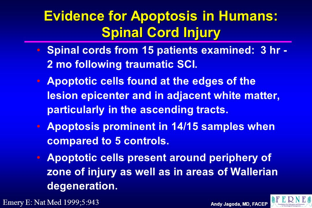 Andy Jagoda, MD, FACEP Evidence for Apoptosis in Humans: Spinal Cord Injury Spinal cords from 15 patients examined: 3 hr - 2 mo following traumatic SC