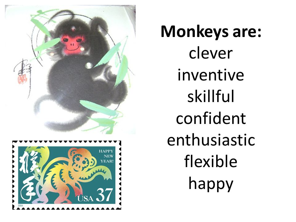 Monkeys are: clever inventive skillful confident enthusiastic flexible happy