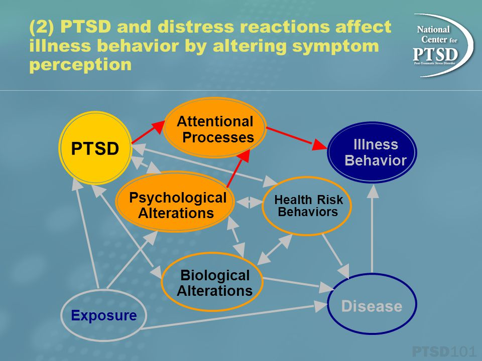 (2) PTSD and distress reactions affect illness behavior by altering symptom perception PTSD Exposure Biological Alterations Psychological Alterations