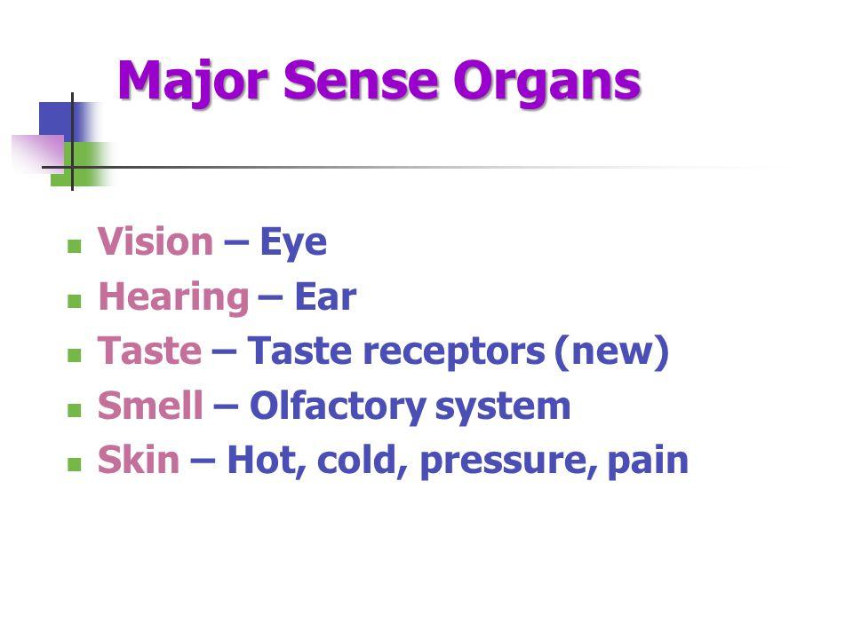 Major Sense Organs Vision – Eye Hearing – Ear Taste – Taste receptors (new) Smell – Olfactory system Skin – Hot, cold, pressure, pain