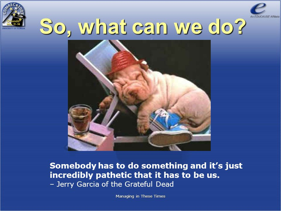 So, what can we do? Somebody has to do something and it's just incredibly pathetic that it has to be us. – Jerry Garcia of the Grateful Dead