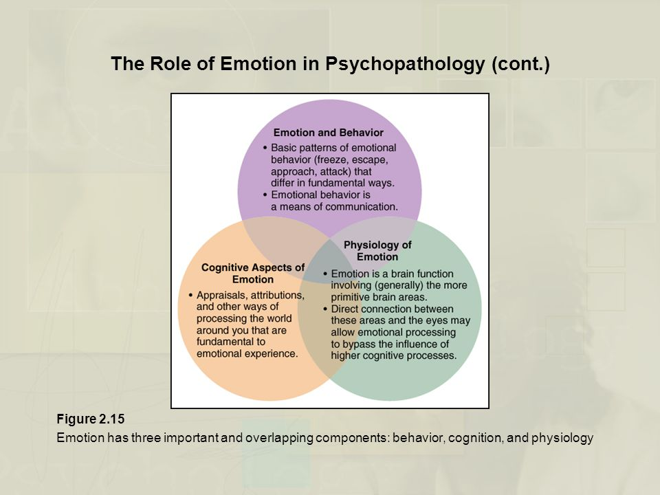 The Role of Emotion in Psychopathology (cont.) Figure 2.15 Emotion has three important and overlapping components: behavior, cognition, and physiology