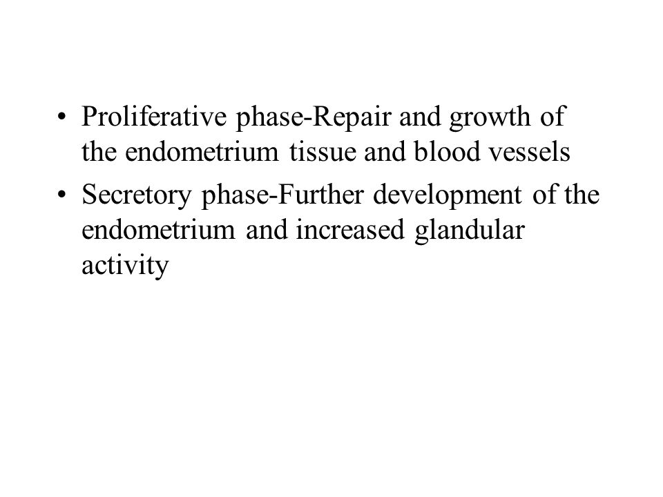 Proliferative phase-Repair and growth of the endometrium tissue and blood vessels Secretory phase-Further development of the endometrium and increased