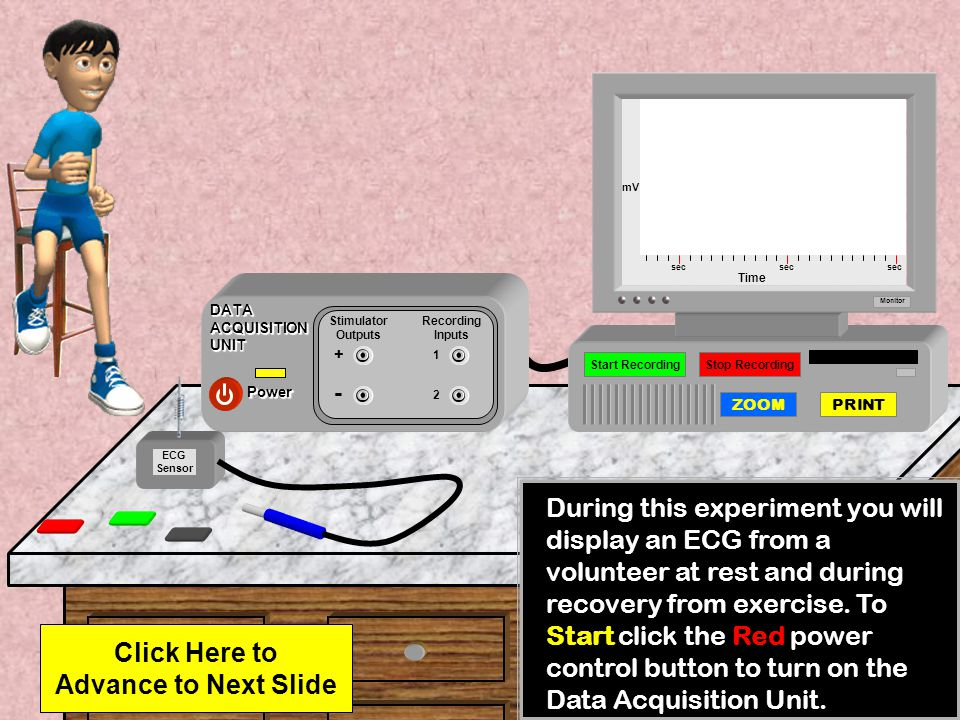 ECG sec mV Time A spike each second would represent a heart rate of 60 beats per minute.