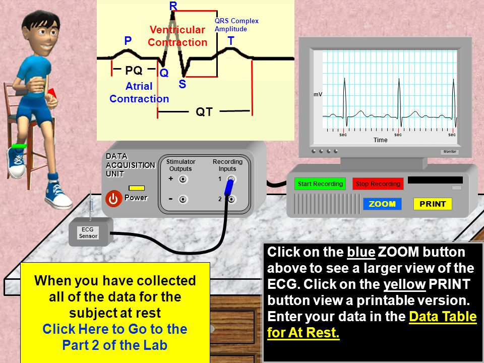 Start Recording the ECG waves by clicking on the Green button on the monitor.