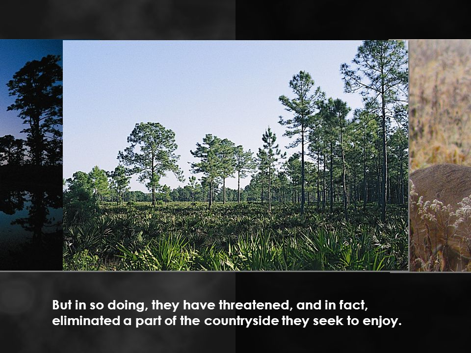 But in so doing, they have threatened, and in fact, eliminated a part of the countryside they seek to enjoy.