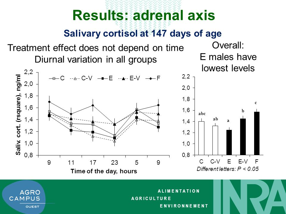A L I M E N T A T I O N A G R I C U L T U R E E N V I R O N N E M E N T Results: adrenal axis Time effect similar in all groups Increase at + 60 min Overall: No treatment effect Salivary cortisol at transfer to slaughter house (152 days) Different letters: P = 0.05