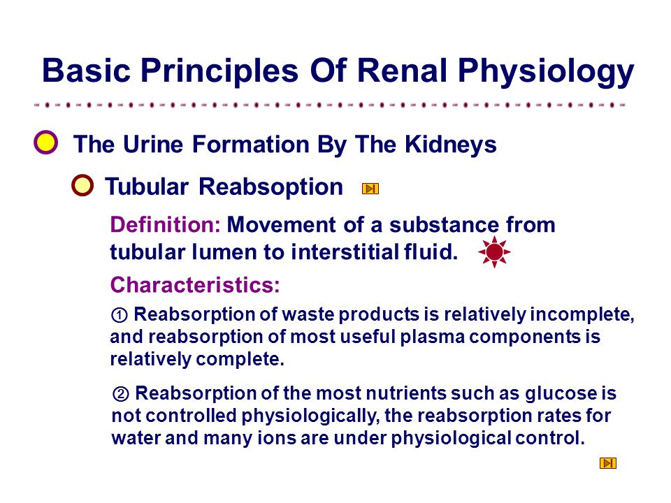 Basic Principles Of Renal Physiology The Urine Formation By The Kidneys Tubular Reabsoption Definition: Movement of a substance from tubular lumen to interstitial fluid.