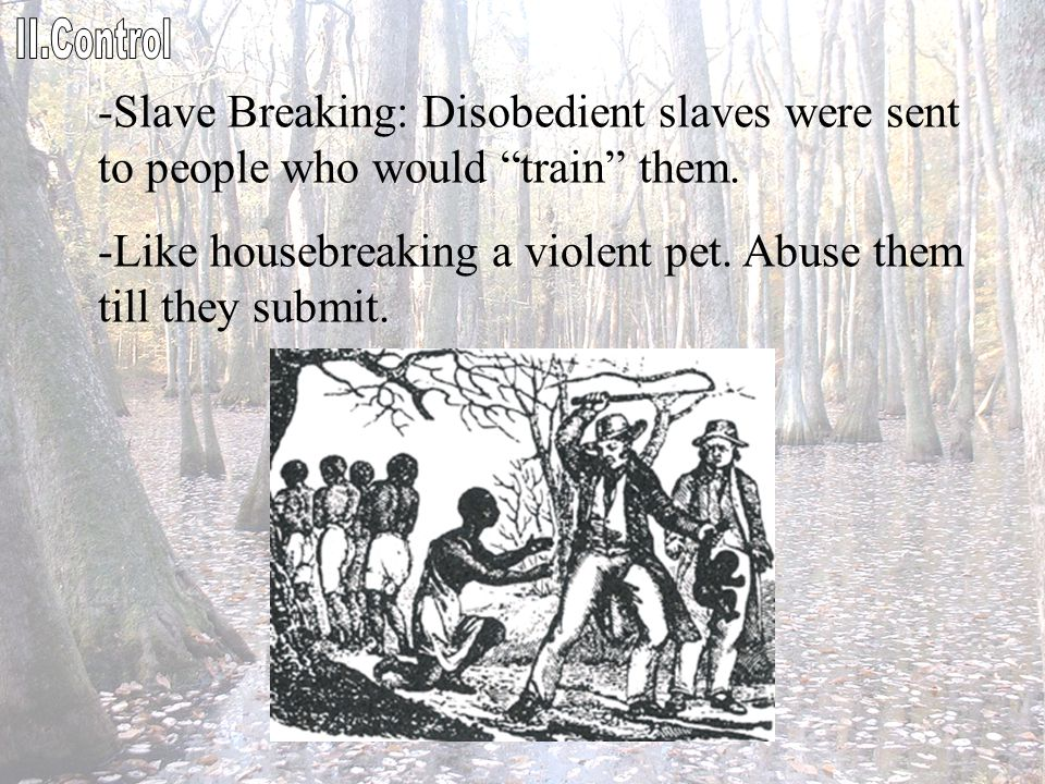 """-Slave Breaking: Disobedient slaves were sent to people who would """"train"""" them. -Like housebreaking a violent pet. Abuse them till they submit."""