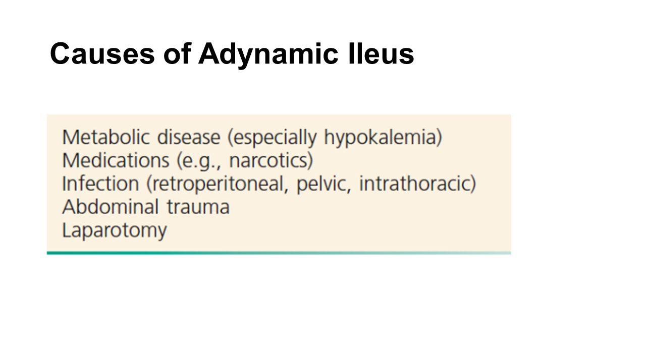 Causes of Adynamic Ileus