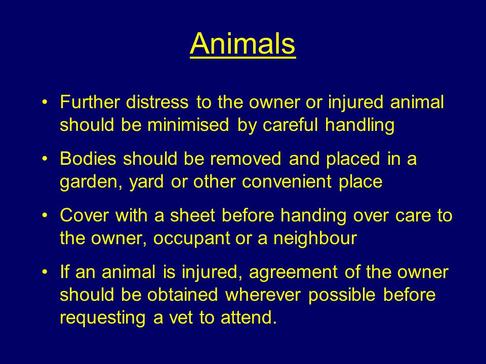 Animals Firefighters may also have to deal with dead or traumatised animals and must bear in mind the fondness most owners have for their pets.