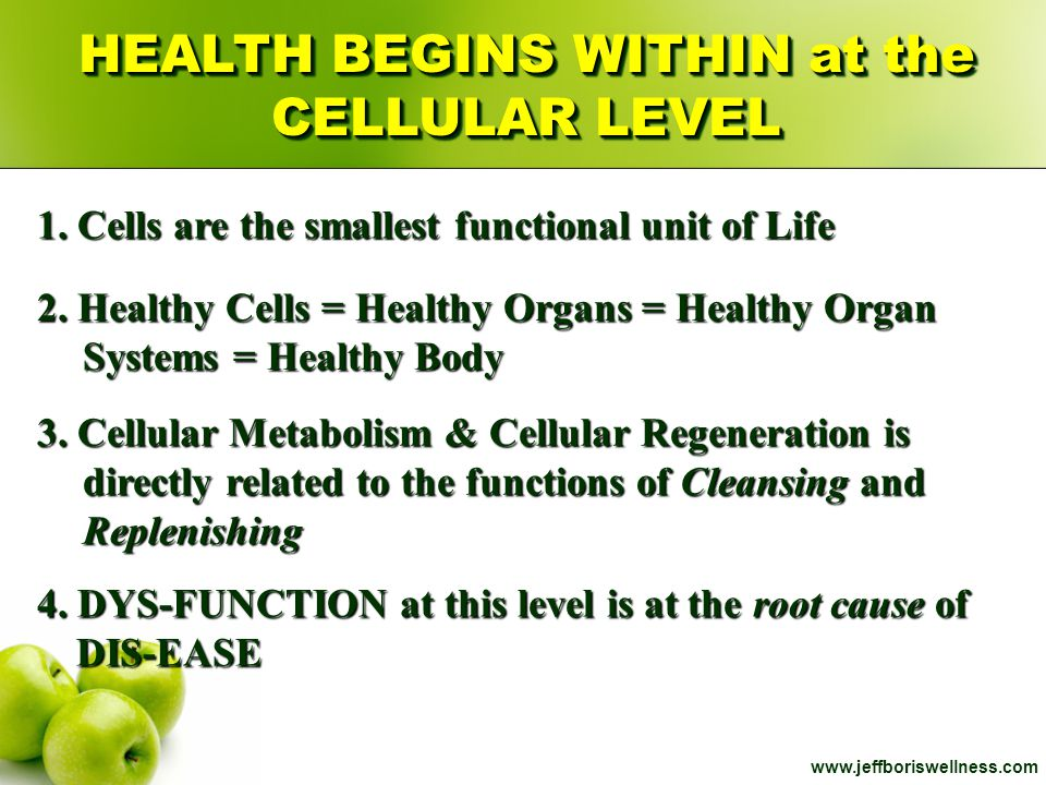 www.jeffboriswellness.com HEALTH BEGINS WITHIN at the CELLULAR LEVEL 2. Healthy Cells = Healthy Organs = Healthy Organ Systems = Healthy Body 3. Cellu