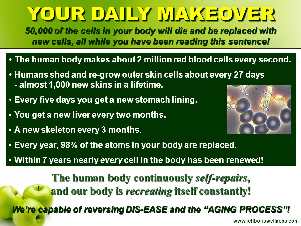 www.jeffboriswellness.com YOUR DAILY MAKEOVER 50,000 of the cells in your body will die and be replaced with new cells, all while you have been readin