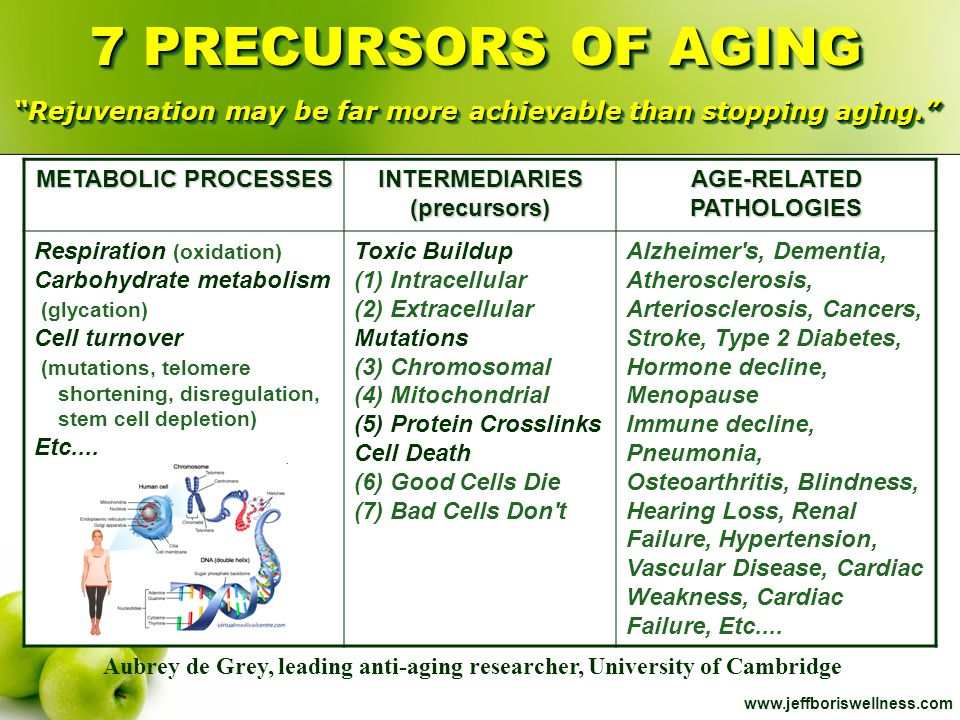 www.jeffboriswellness.com METABOLIC PROCESSES INTERMEDIARIES(precursors) AGE-RELATED PATHOLOGIES Respiration (oxidation) Carbohydrate metabolism (glyc