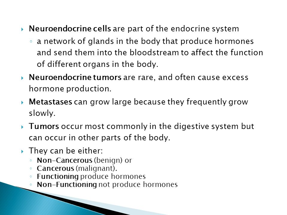  Neuroendocrine cells are part of the endocrine system ◦ a network of glands in the body that produce hormones and send them into the bloodstream to affect the function of different organs in the body.