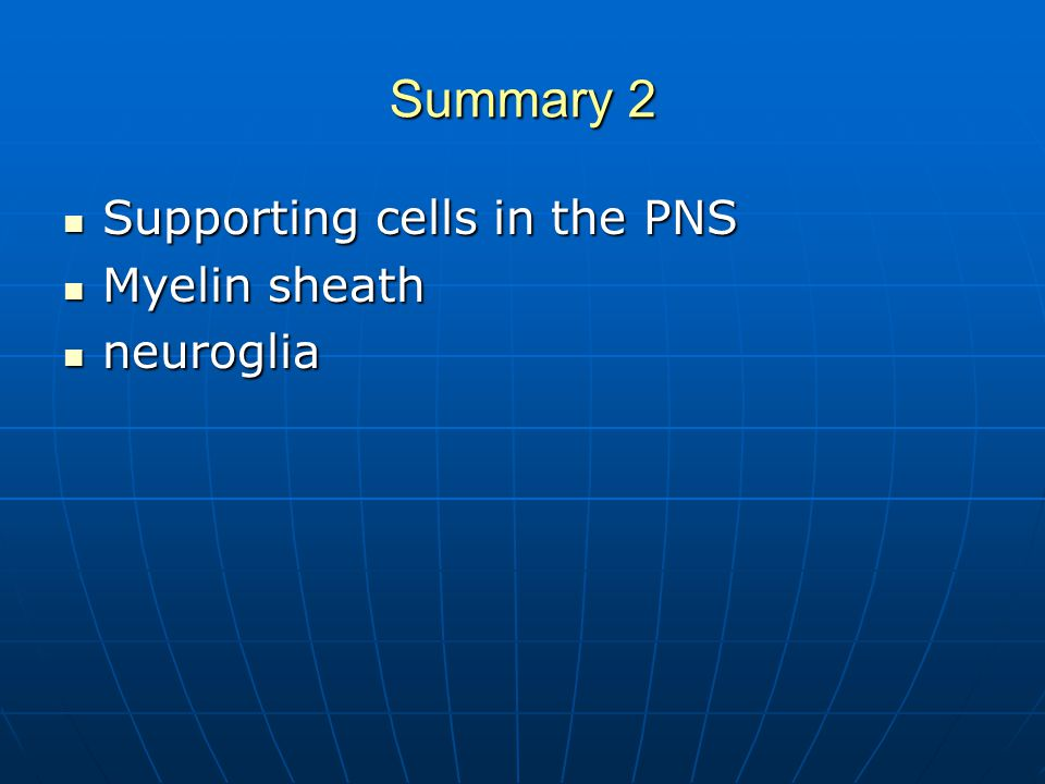 Summary 2 Supporting cells in the PNS Supporting cells in the PNS Myelin sheath Myelin sheath neuroglia neuroglia