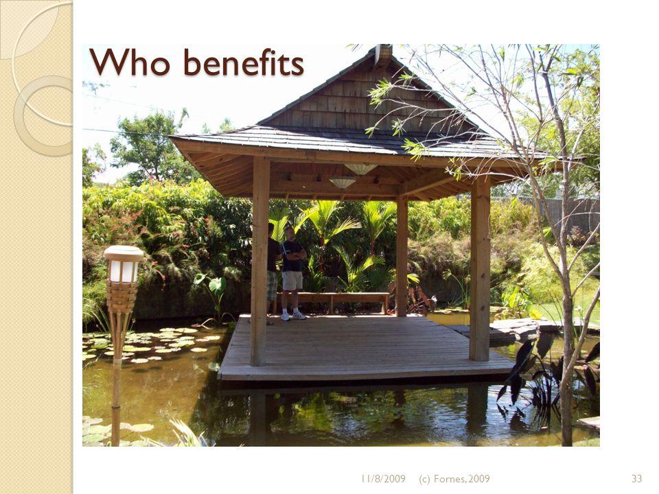 Who benefits 11/8/200933(c) Fornes, 2009