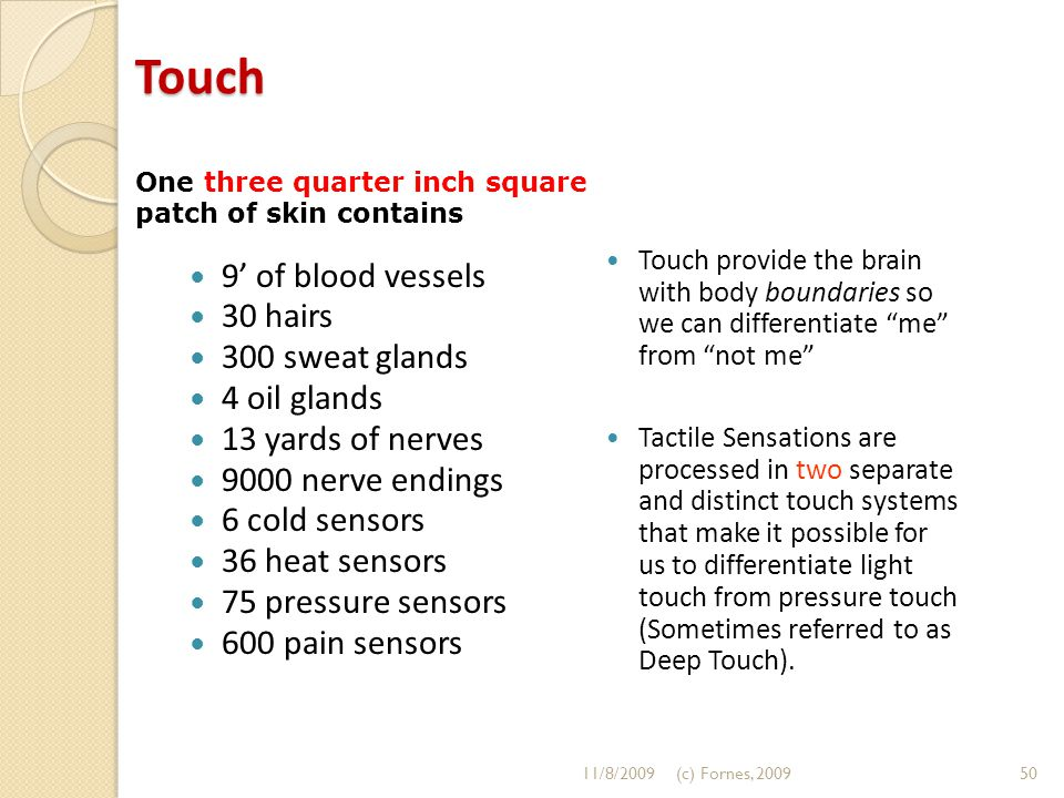 Touch Touch provide the brain with body boundaries so we can differentiate me from not me Tactile Sensations are processed in two separate and distinct touch systems that make it possible for us to differentiate light touch from pressure touch (Sometimes referred to as Deep Touch).