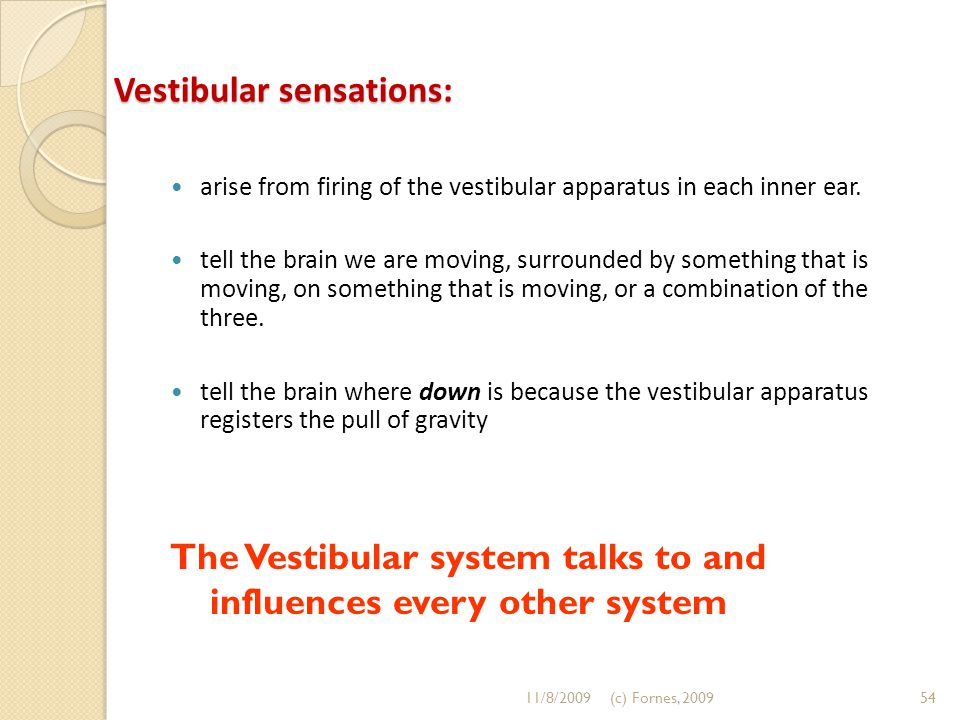 Vestibular sensations: arise from firing of the vestibular apparatus in each inner ear. tell the brain we are moving, surrounded by something that is