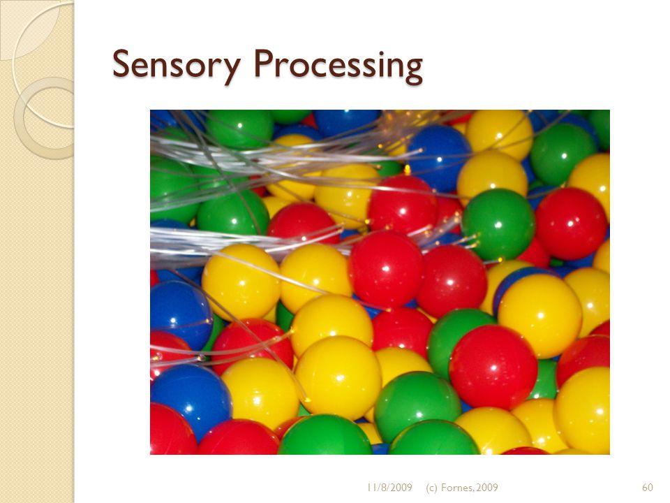 Sensory Processing 11/8/2009(c) Fornes, 200960