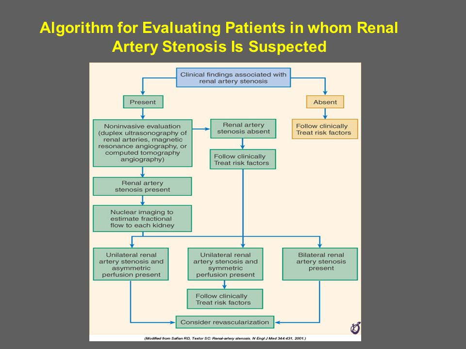 Algorithm for Evaluating Patients in whom Renal Artery Stenosis Is Suspected
