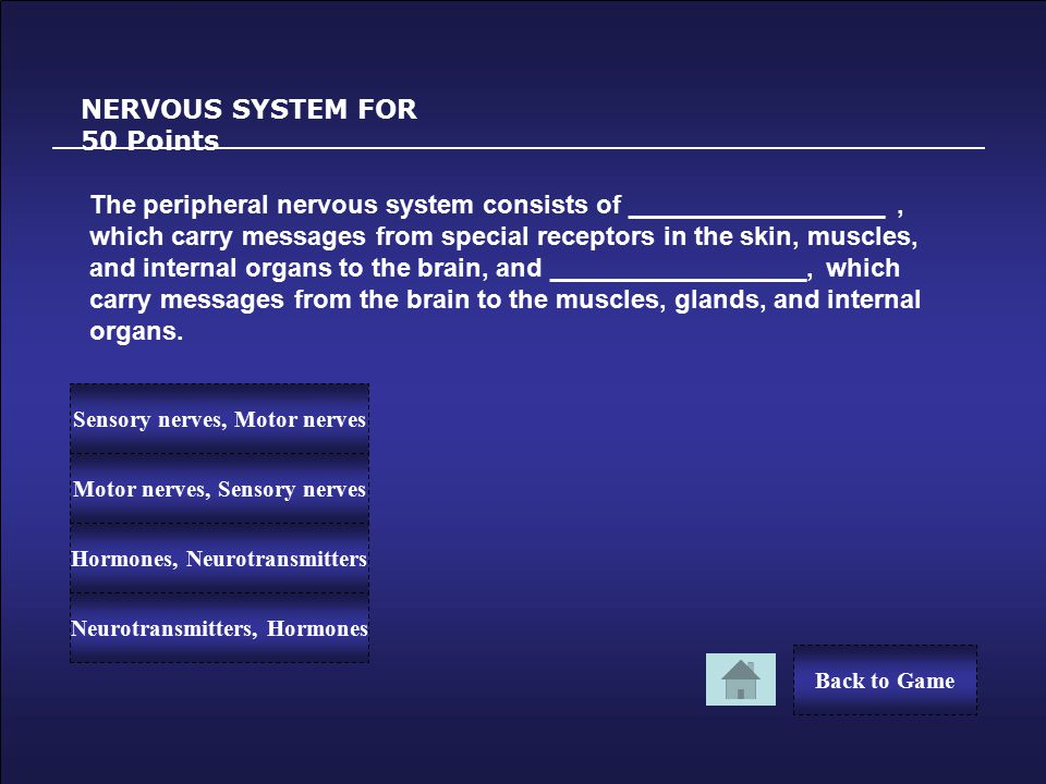 Congratulations! NERVOUS SYSTEM FOR 40 Points You Win 40 Points! Back to Game