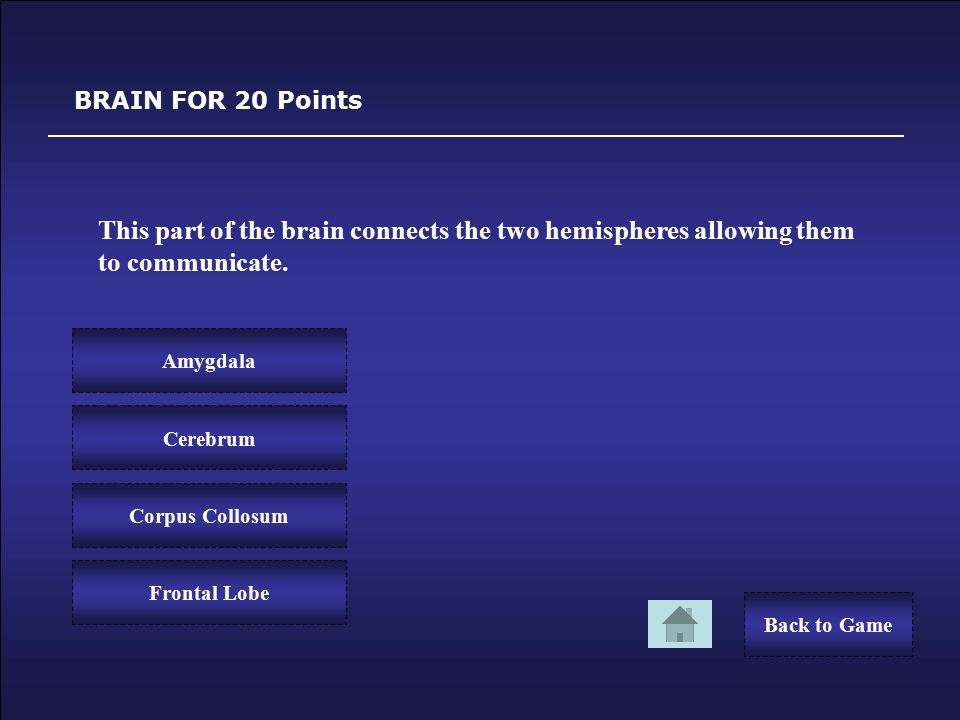 Sorry! BRAIN FOR 10 Points You Lost 10 Points. Back to GameTry Again