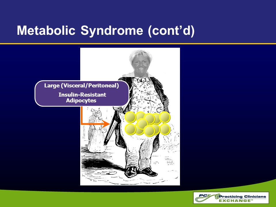 Large (Visceral/Peritoneal) Insulin-Resistant Adipocytes Metabolic Syndrome (cont'd)