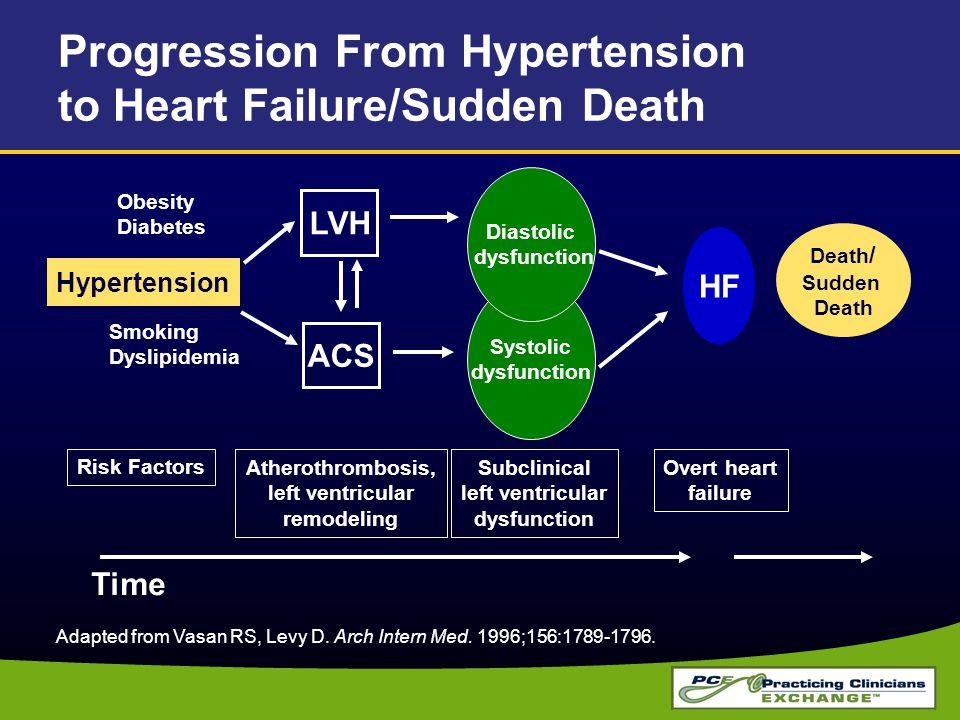 Time Adapted from Vasan RS, Levy D. Arch Intern Med. 1996;156:1789-1796. Death / Sudden Death Obesity Diabetes Smoking Dyslipidemia HF Overt heart fai