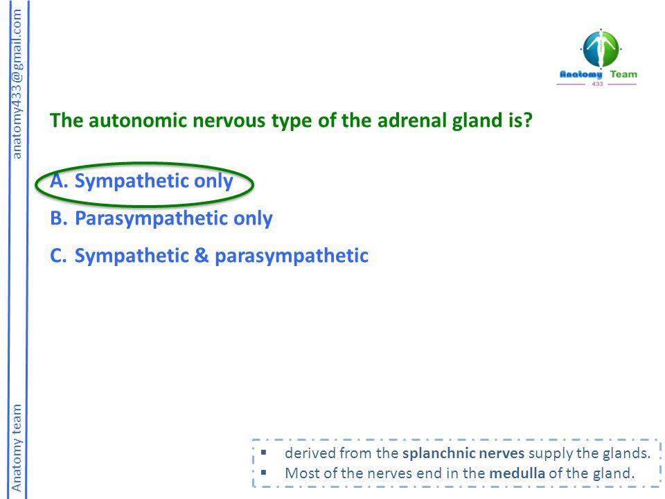 Anatomy team anatomy433@gmail.com The autonomic nervous type of the adrenal gland is.