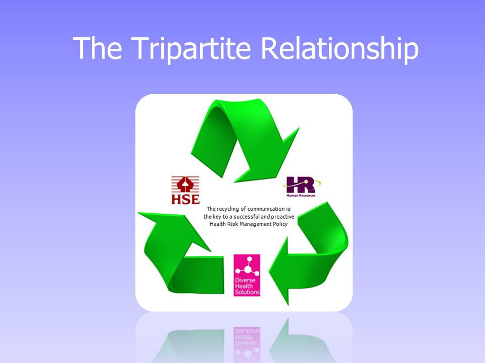 The Tripartite Relationship