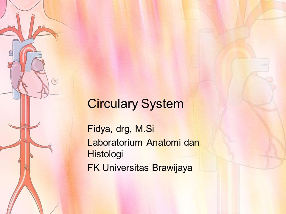 The circulatory system divided into:  The cardiovascular system, which consists of the heart, blood vessels, and blood  Lymphatic system, which consists of lymphatic vessels and lymphoid tissues within the spleen, thymus, tonsils, and lymph nodes.