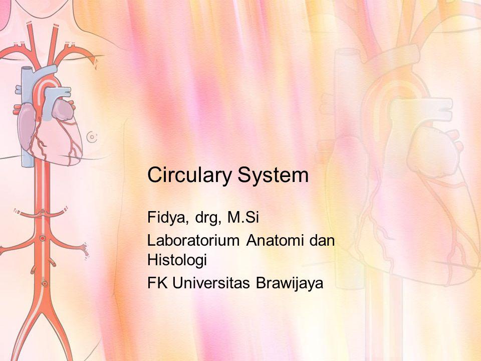 Circulary System Fidya, drg, M.Si Laboratorium Anatomi dan Histologi FK Universitas Brawijaya