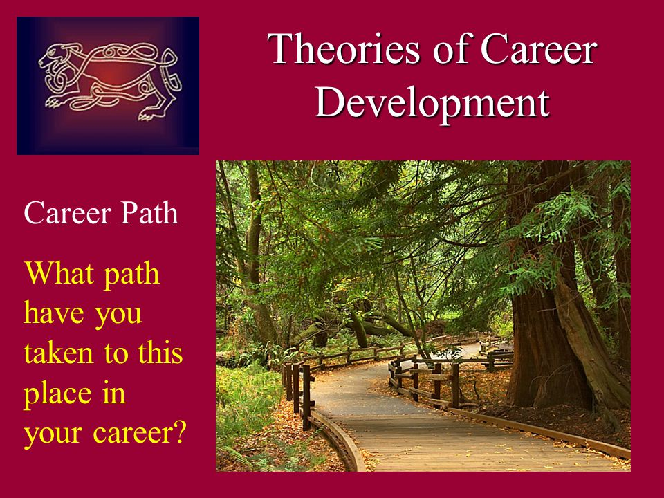 Career Path What path have you taken to this place in your career