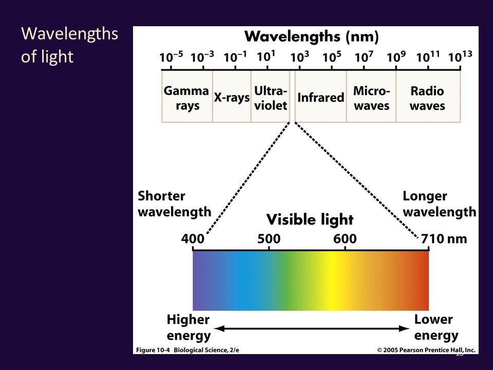 Wavelengths of light 15