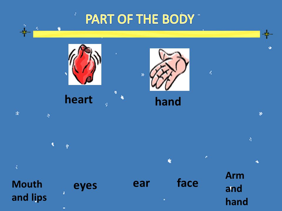 heart hand Mouth and lips eyes earface Arm and hand