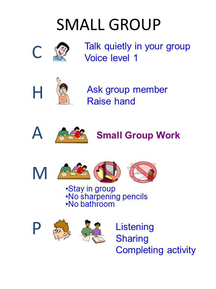 SMALL GROUP CHAMPCHAMP Talk quietly in your group Voice level 1 Ask group member Raise hand Small Group Work Stay in group No sharpening pencils No ba