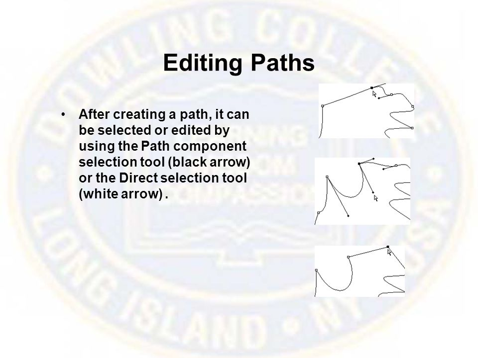 Editing Paths After creating a path, it can be selected or edited by using the Path component selection tool (black arrow) or the Direct selection tool (white arrow).
