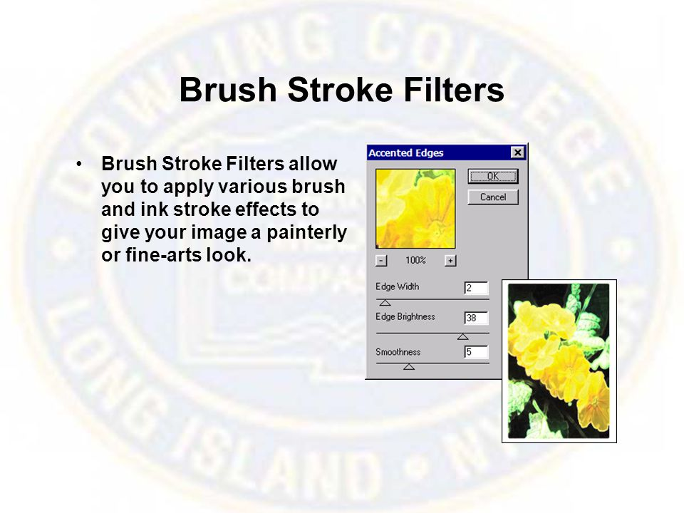 Brush Stroke Filters Brush Stroke Filters allow you to apply various brush and ink stroke effects to give your image a painterly or fine-arts look.
