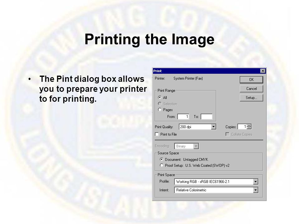 Printing the Image The Pint dialog box allows you to prepare your printer to for printing.