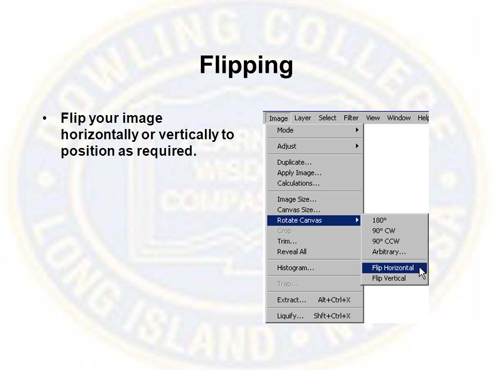 Flipping Flip your image horizontally or vertically to position as required.