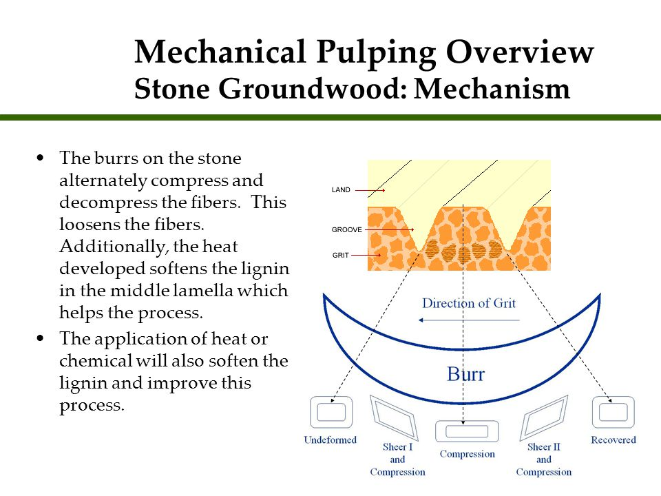 Mechanical Pulping Overview Stone Groundwood: Mechanism The burrs on the stone alternately compress and decompress the fibers. This loosens the fibers