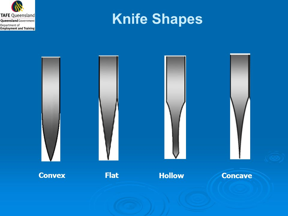 Knife Shapes FlatConvex HollowConcave
