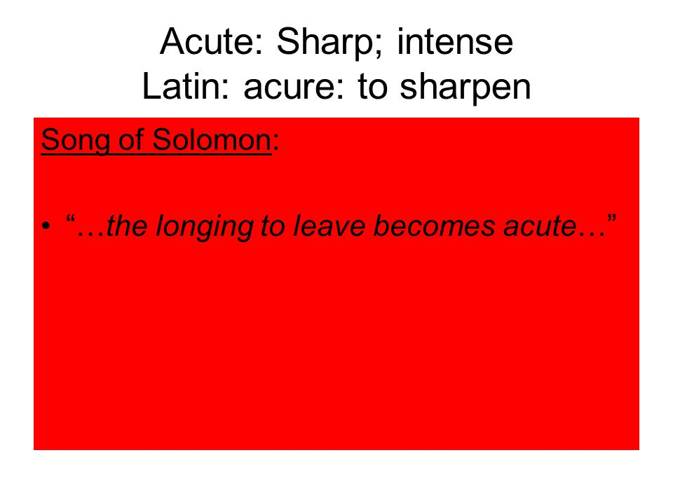 Acute: Sharp; intense Latin: acure: to sharpen Song of Solomon: …the longing to leave becomes acute…