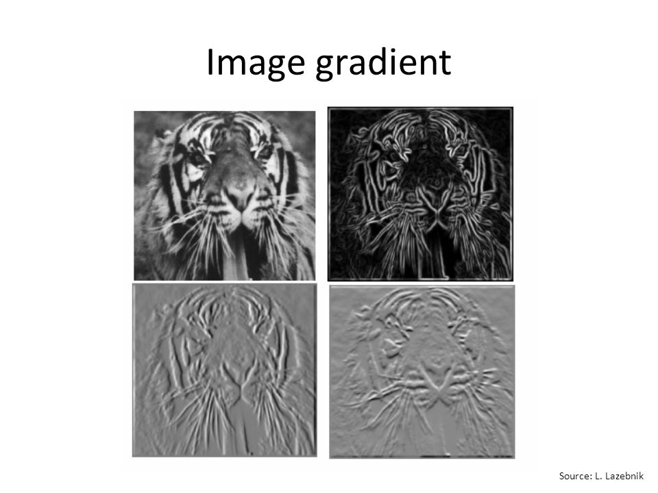Image gradient Source: L. Lazebnik