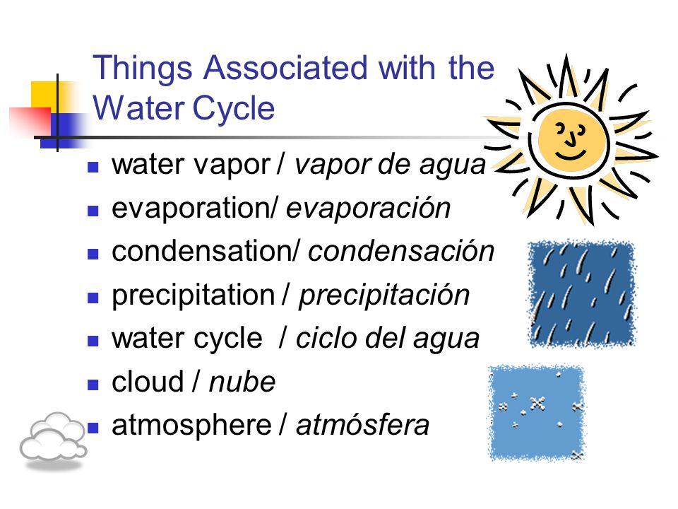 Things Associated with the Water Cycle water vapor / vapor de agua evaporation/ evaporación condensation/ condensación precipitation / precipitación water cycle / ciclo del agua cloud / nube atmosphere / atmósfera