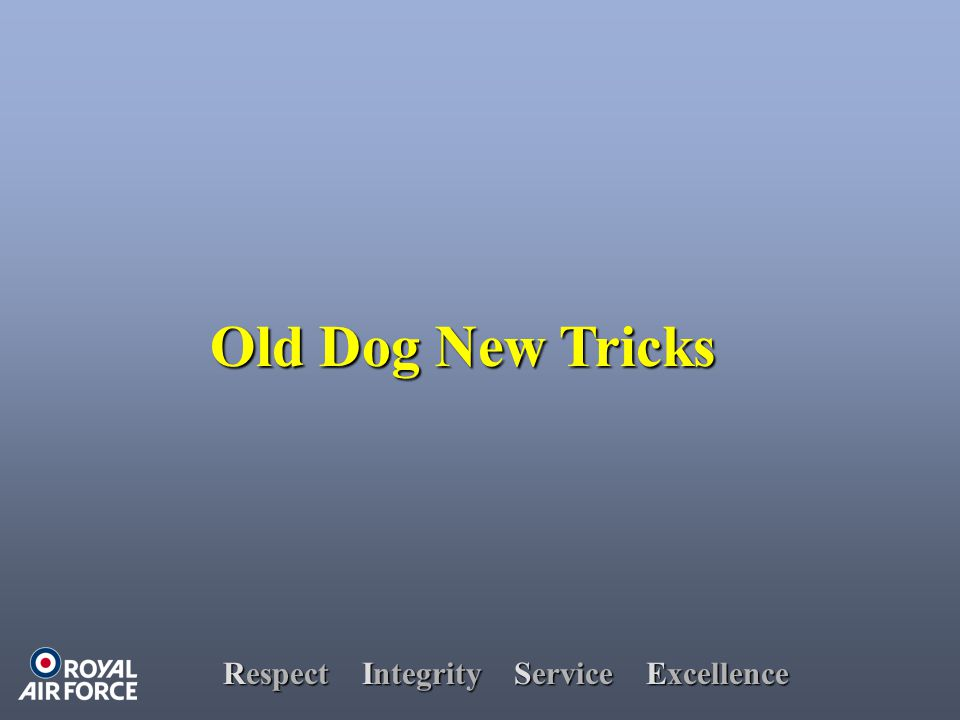 Respect Integrity Service Excellence Old Dog New Tricks